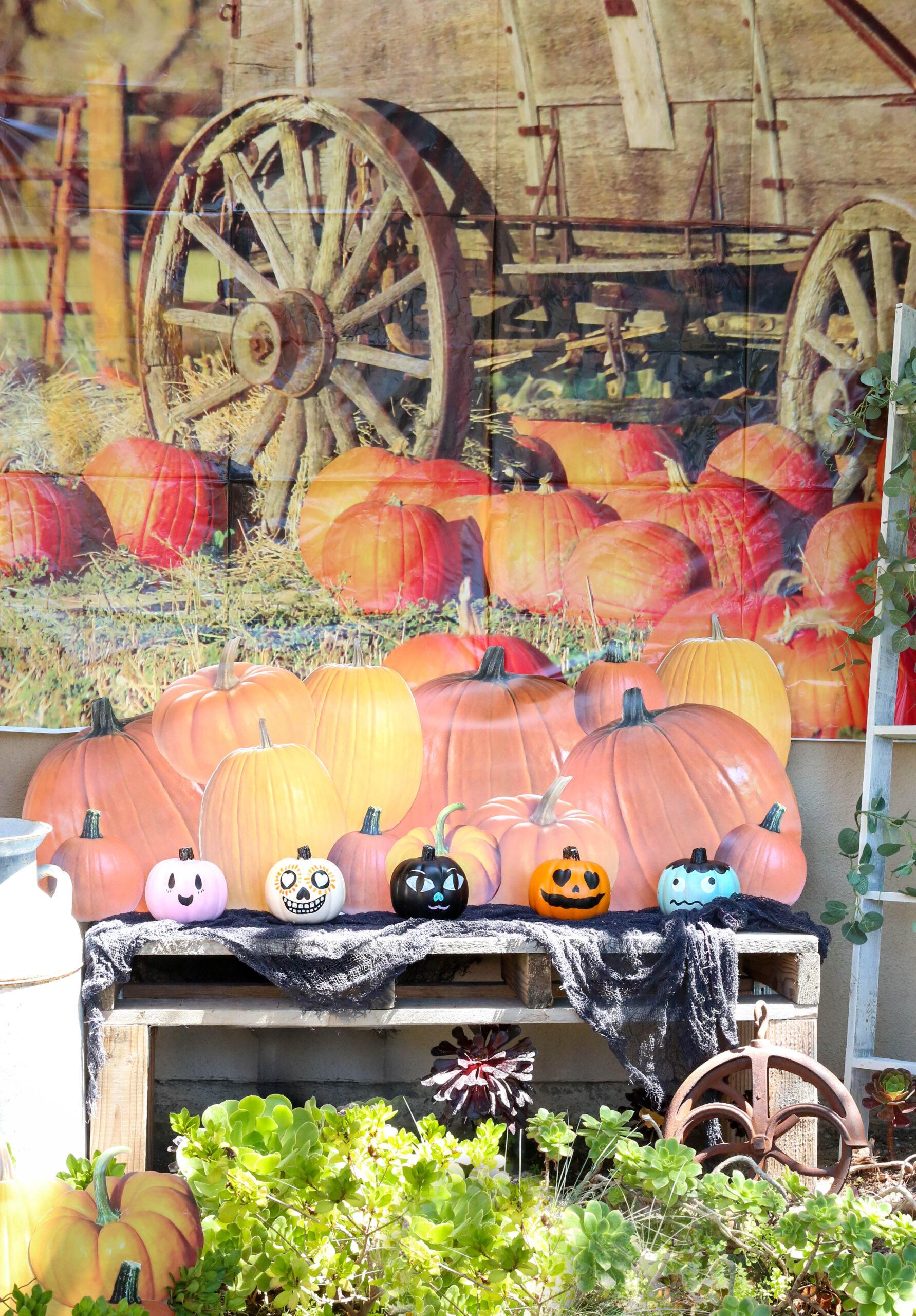 painted pumpkins front yard halloween