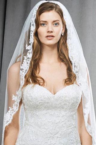 accessory kw veils