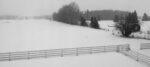 Snow and Silence