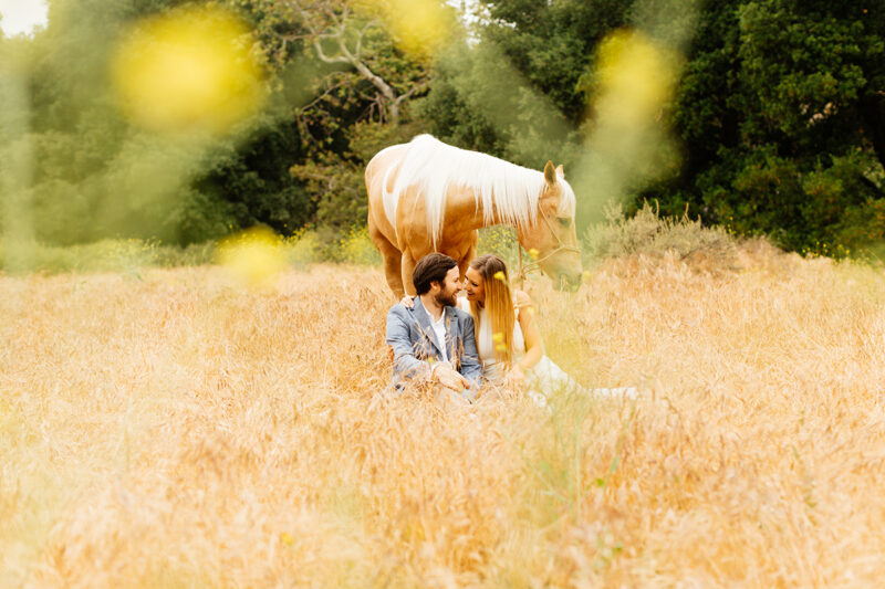 An engaged couple sit holding each other with their horse grazing in a field for this Granada Hills engagement photography session