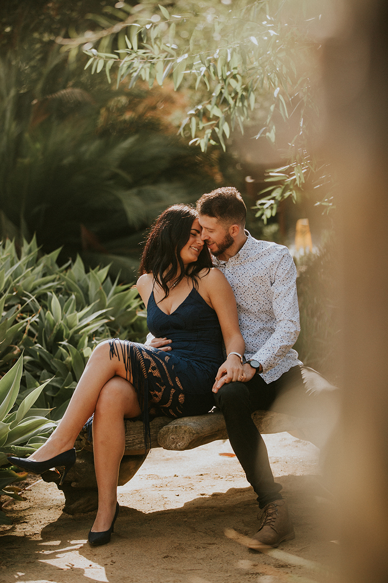 A couple sit holding each other at the Los Angeles County Arboretum and Botanic Garden for this Los Angeles engagement photography session