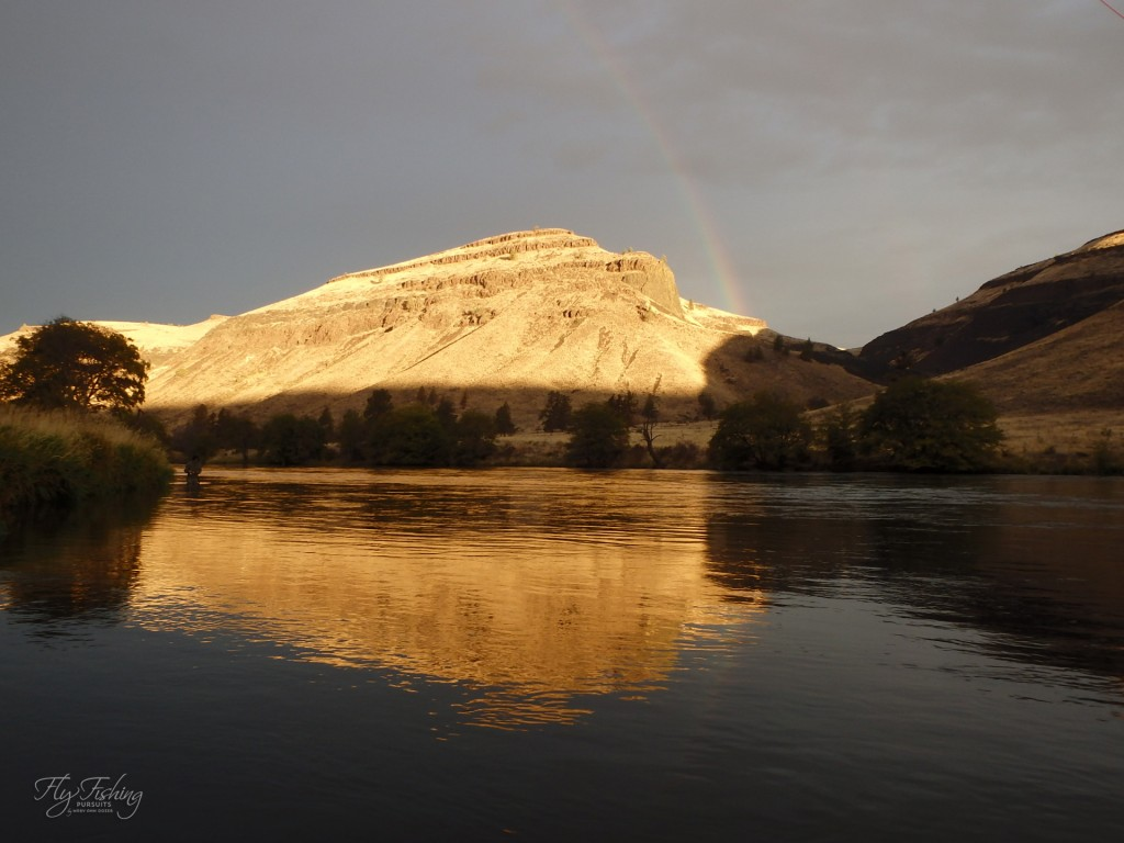 Early morning sun and showers enticed a rainbow - just not the kind that take a fly.