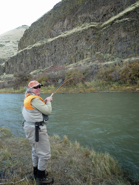 Well - it was fun to play this steelhead - but it won the game and threw the hook.