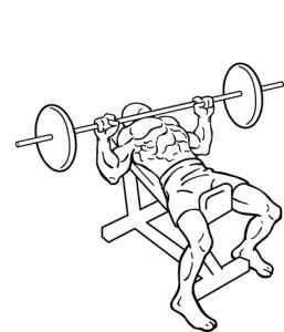 411px-Incline-bench-press-2
