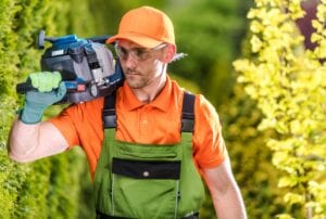 Hire professional tree services in Centennial, CO with Mortensen Tree Service
