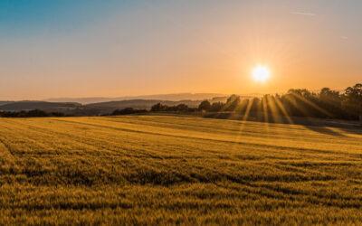 Understanding Land Planning And Development In California