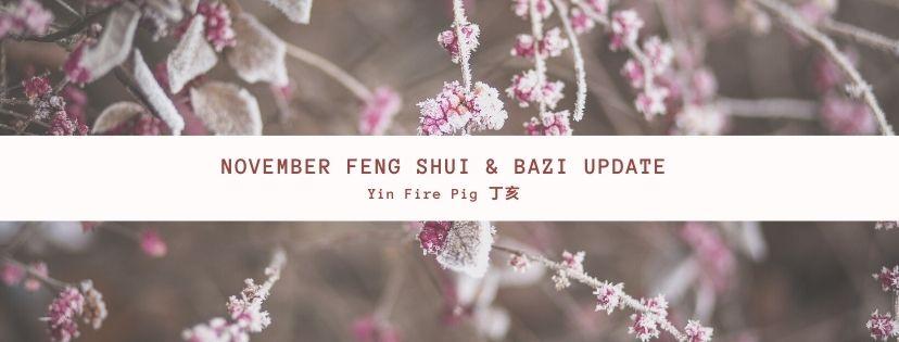 November 2020 Yin Fire Pig Feng Shui & BaZi Update