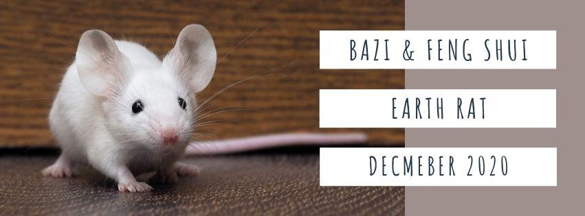 December 2020 Yang Earth Rat Feng Shui & BaZi Update