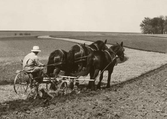 early farming 2