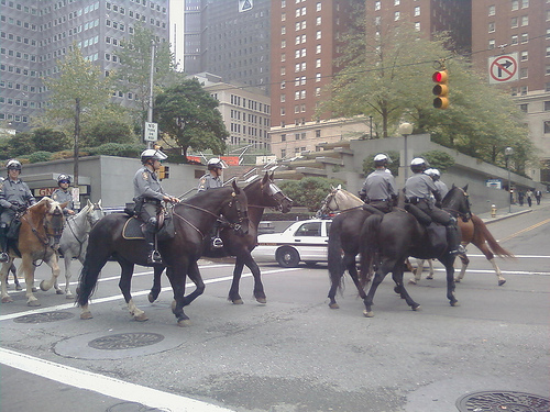 Allegheny County Mounted Police at recent Pittsburgh parade