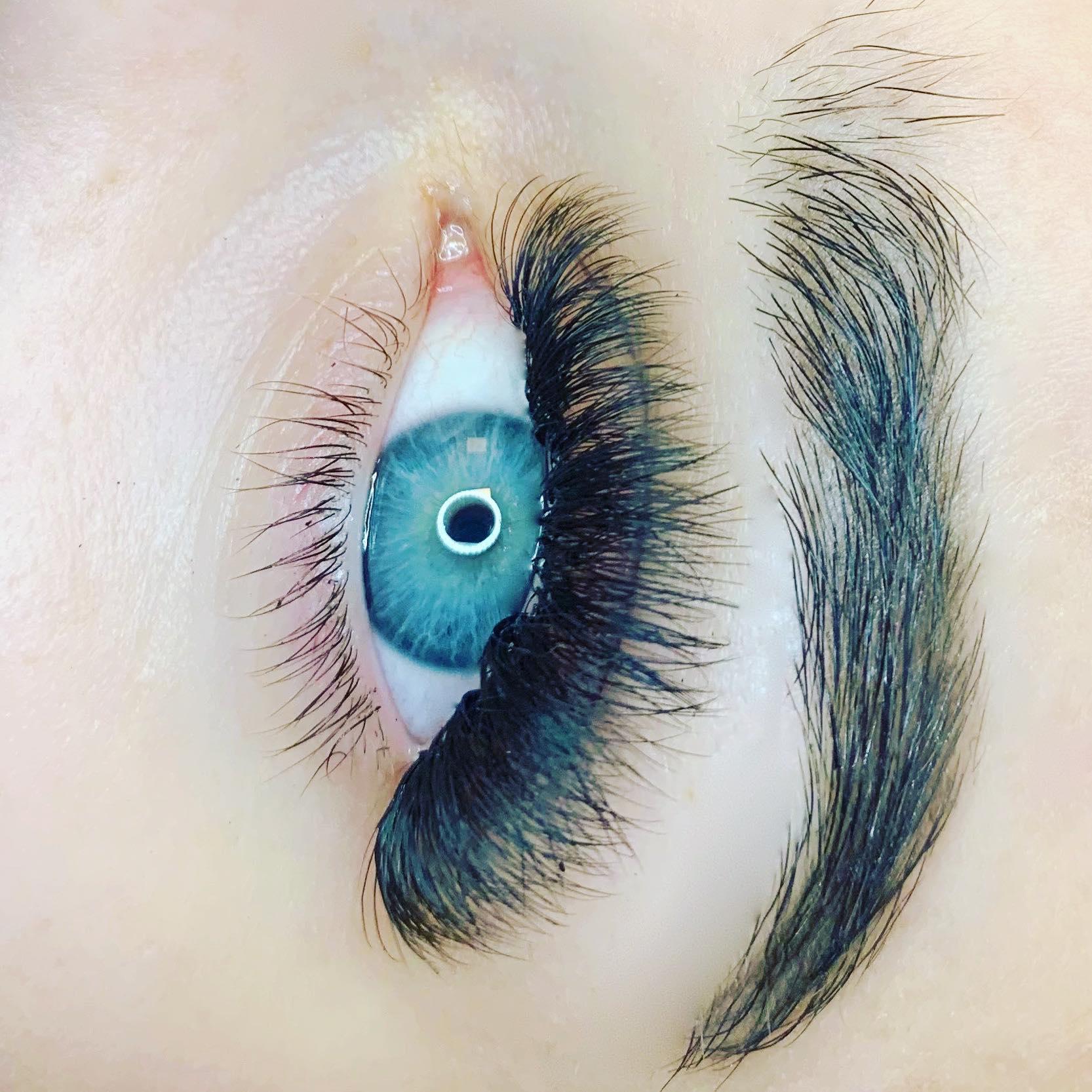 fredericton lashes