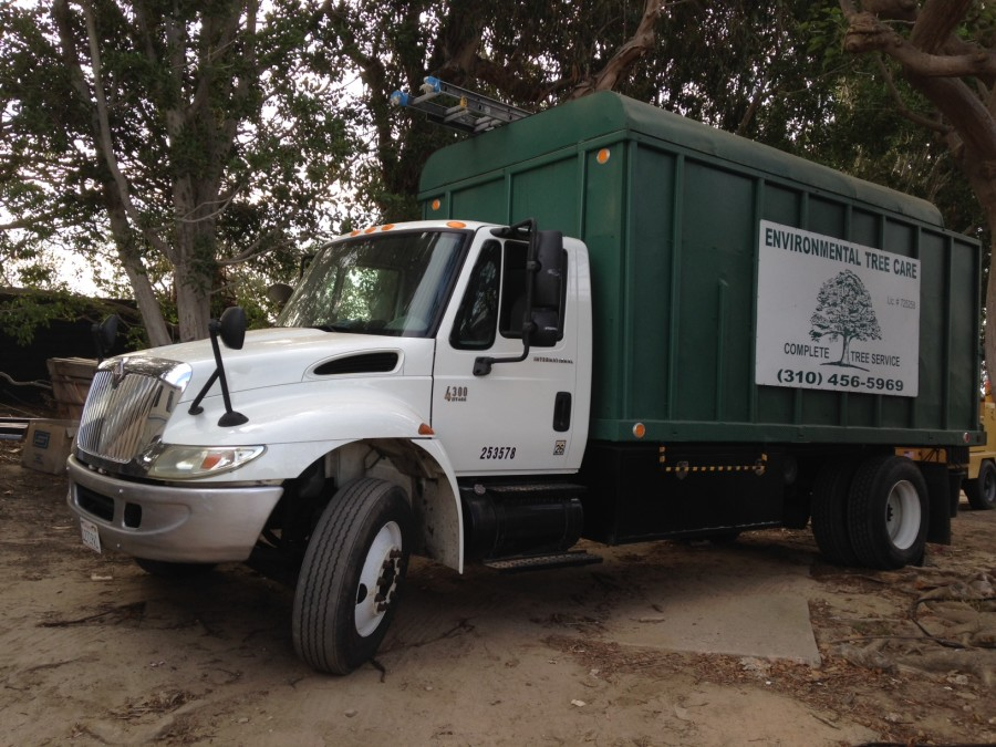 about-environmental-tree-care-malibu-900x675
