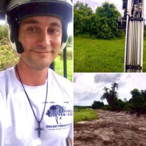 Land Clearing in Sorrento,FL by Kats Tree Service
