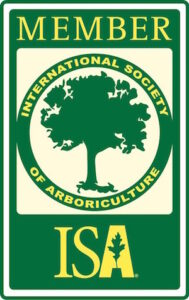Professional ISA Member