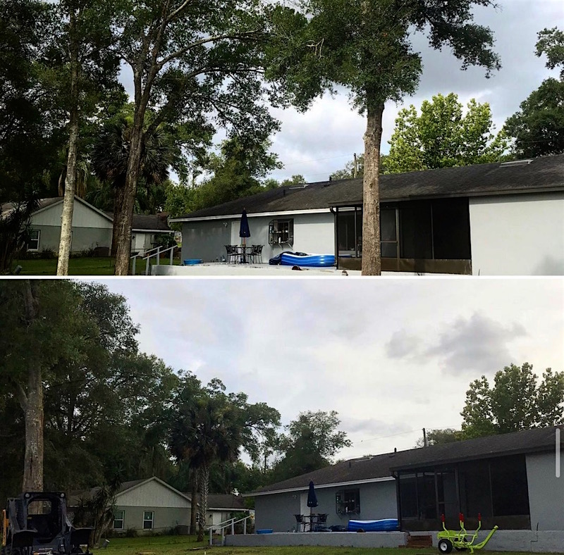 Mt Plymouth Tree Removal Services by Kats Tree Service