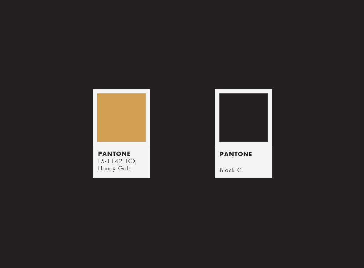 Blanchy's Lounge, rebranding, logo, visual identity, xolve branding
