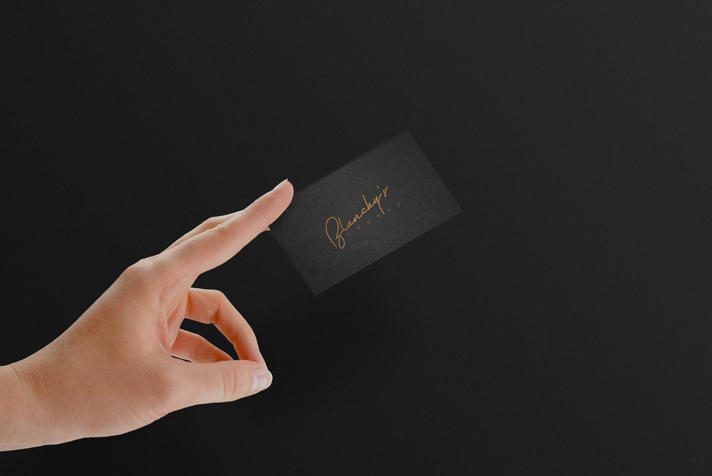 blanchy's lounge application, xolve branding, business card, name card