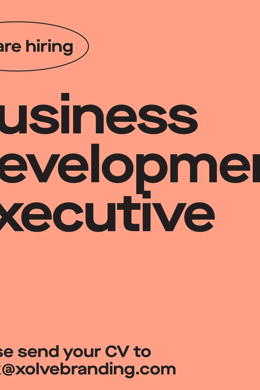 business development executive poster