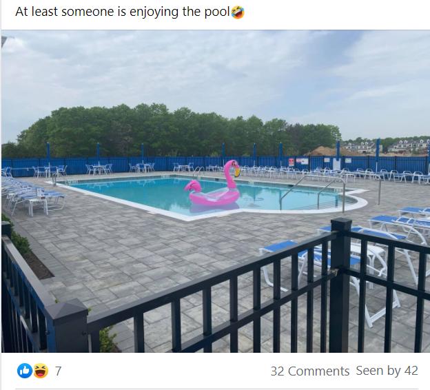 Inflatable flamingo in pool at vineyards brookfield facebook post