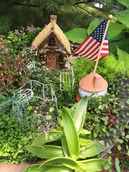 Fairy Garden by Every Day is an Occasion