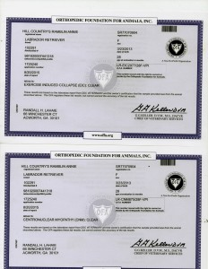 Annies OFA-DNA Certifications