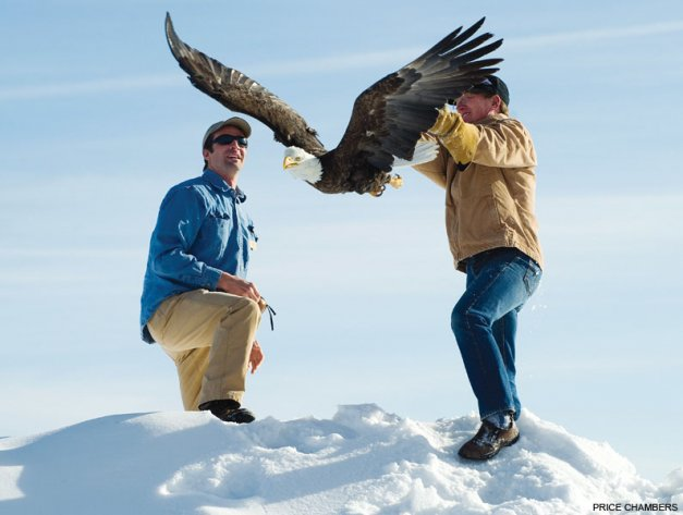 Two Men Helping an Eagle to Fly