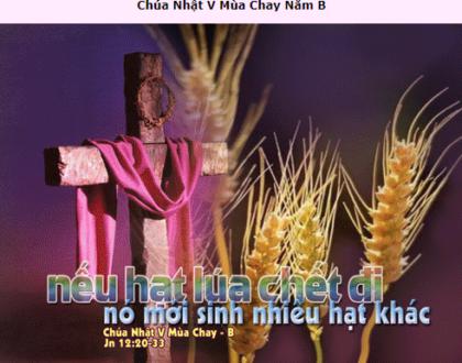Suy Niệm - Chúa Nhật 5 Mùa Chay - March 21 - Năm B - Daily Mass Thánh Lễ Online