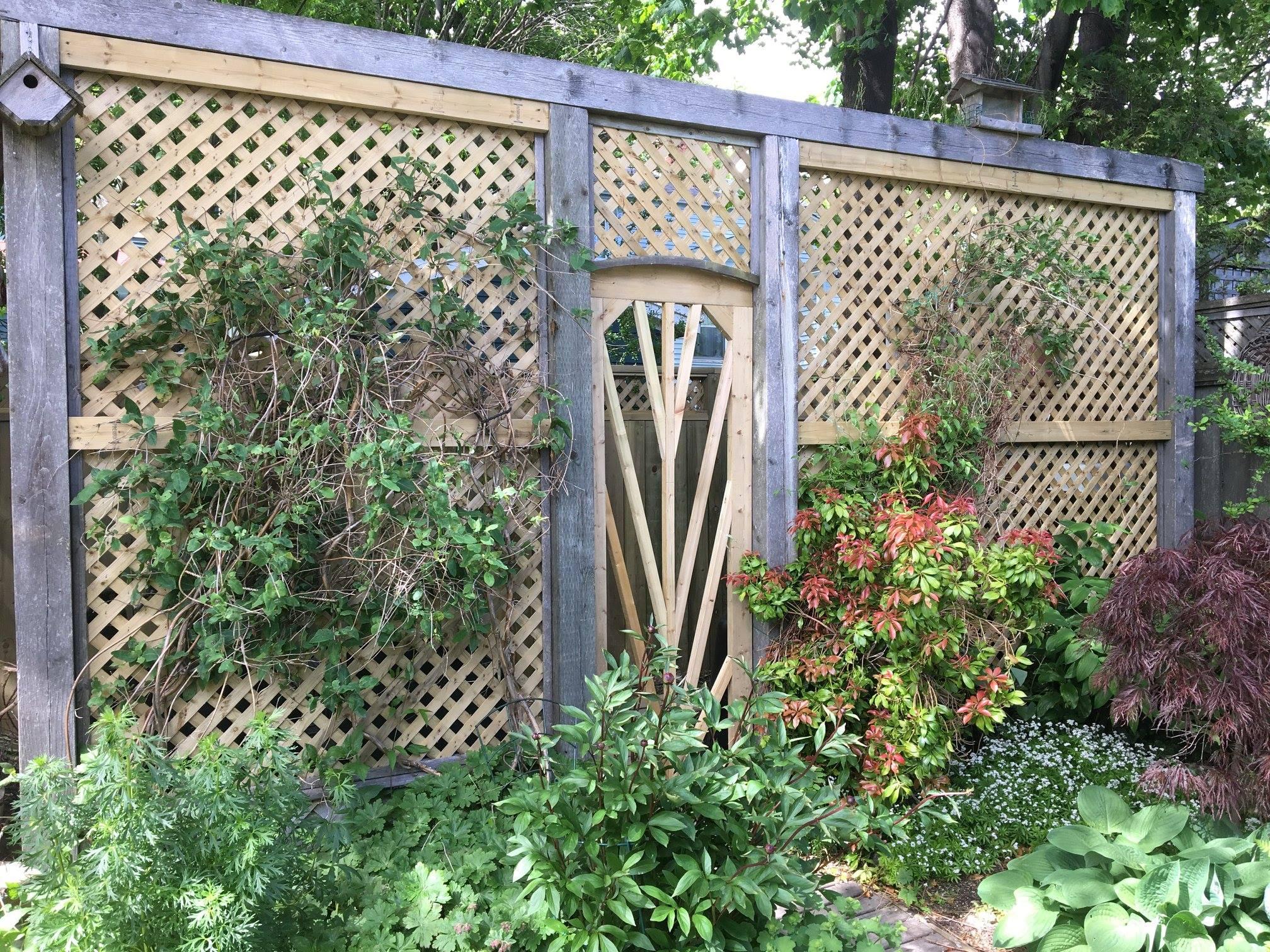 Garden Lattice