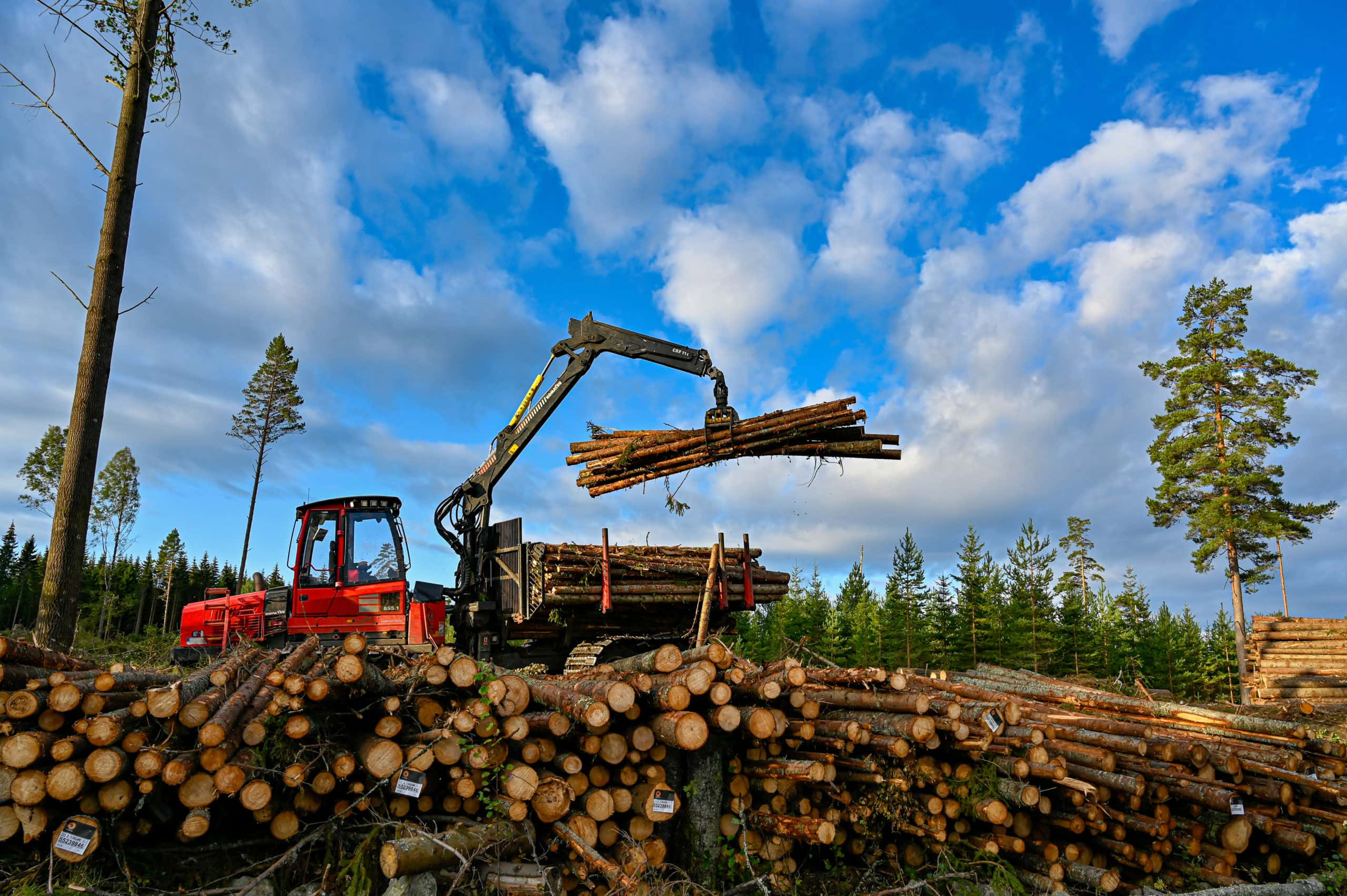 Komatsu forest machine lifting timber near Filipstad Sweden 19 September 2019