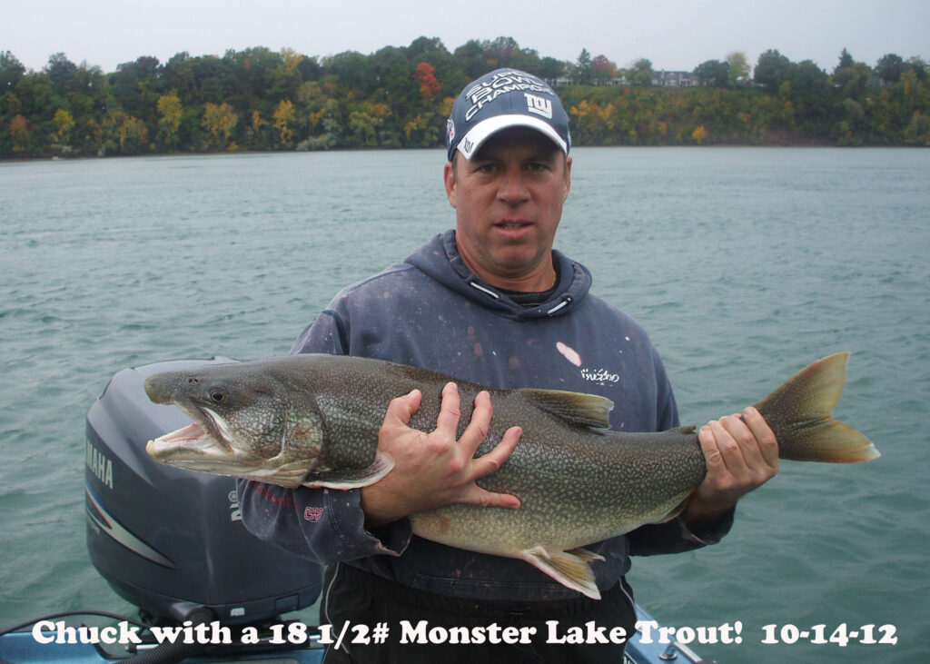 Lake Trout Monster Fish Photos