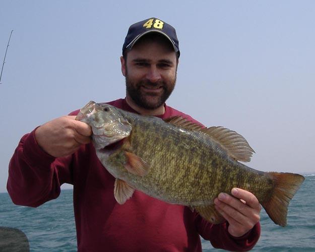 Lake Erie Smallmouth Bass Schultz Sportfishing Home