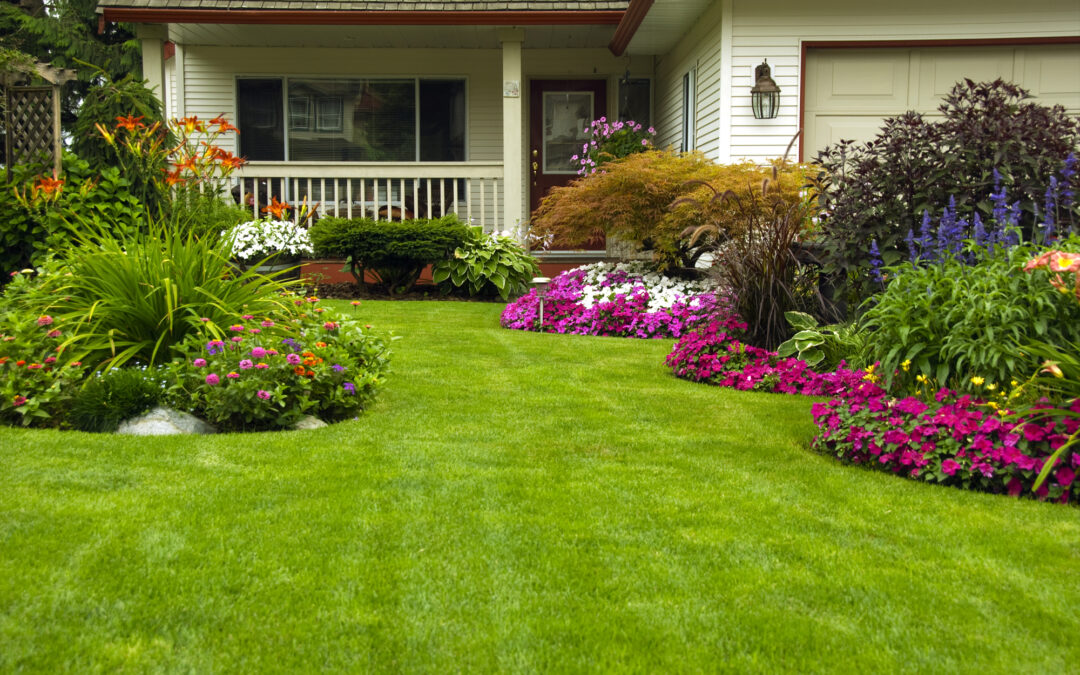 how to make your landscaping look great