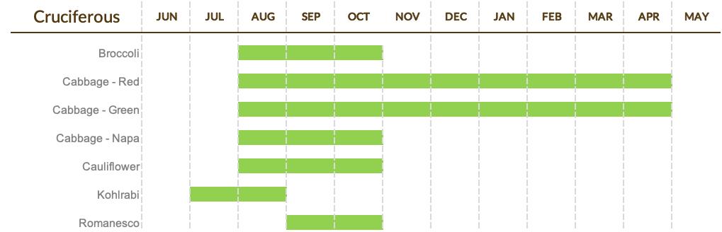 Cruciferous Calendar