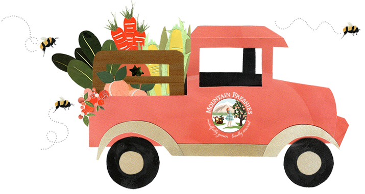 Illustration of Mountain Freshies delivery truck