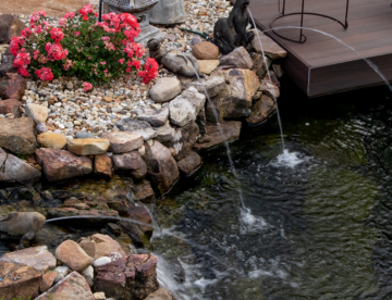 The importance of regulating your pond's water temperature if you have fish.