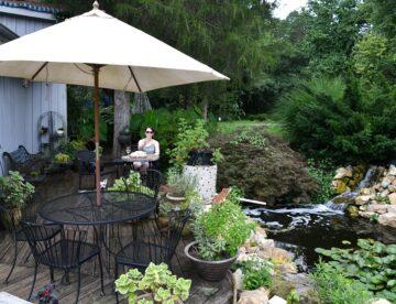 Benefits of having a garden pond.