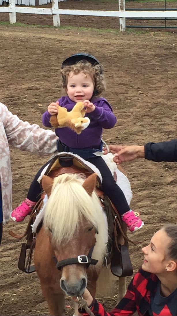 rider on pony