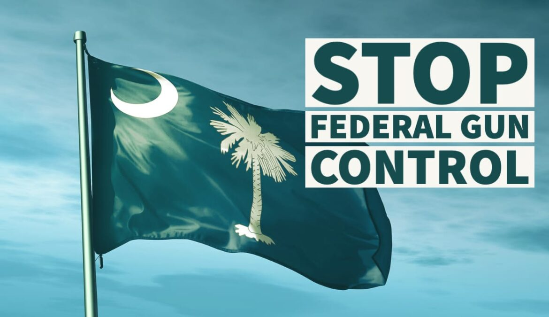 South Carolina Bills Would Take on Federal Gun Control