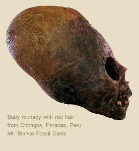 2014-312 BabyChongosCastLable3-12-14 For Website