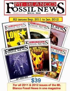 Fossil News Combo Magazine