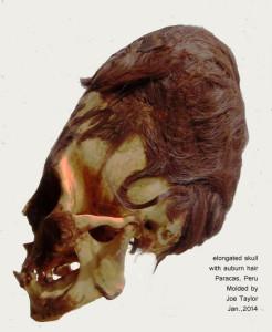 Elongated skull with auburn hair 3-17-14 Website