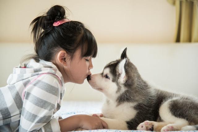 Grow Gratitude with Your Pet