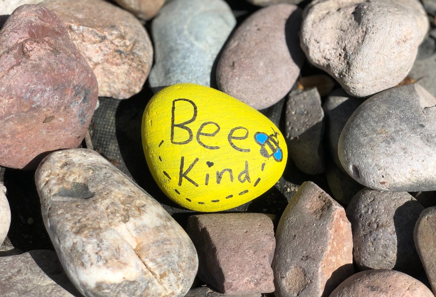 Why Kindness Matters