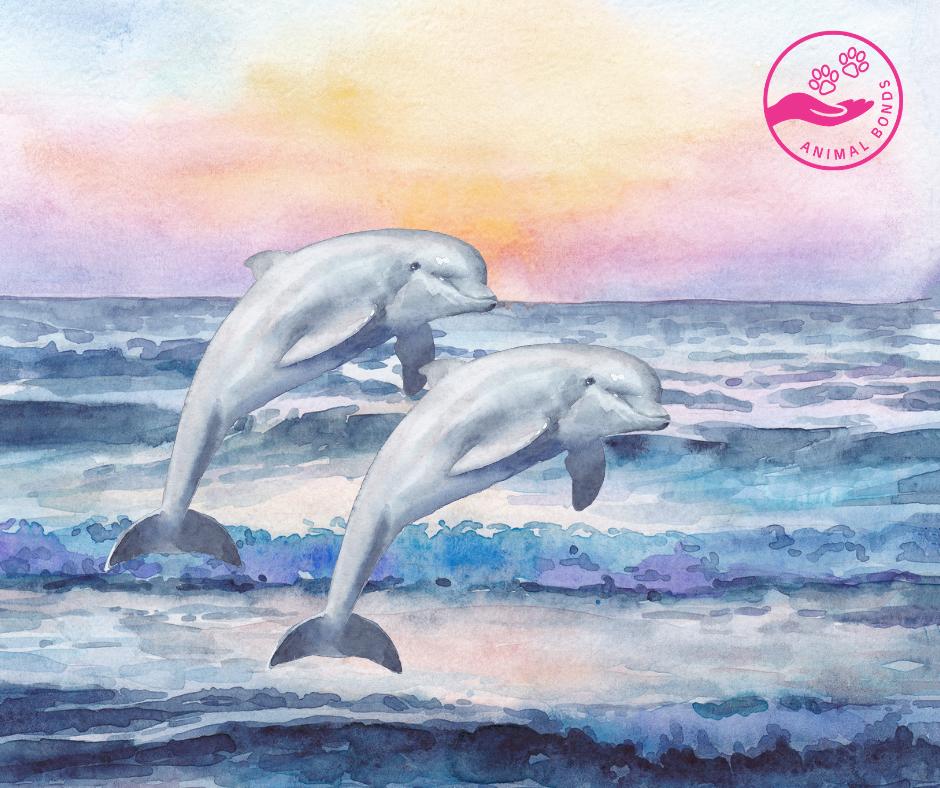 Dolphins As Spirit Animals