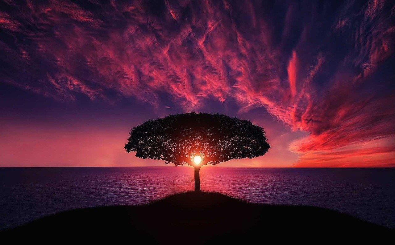 Master Reflective Thinking to Maximize Progress
