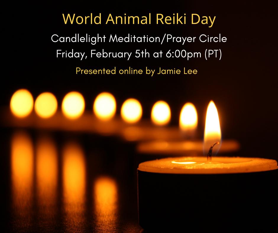 World Animal Reiki Day