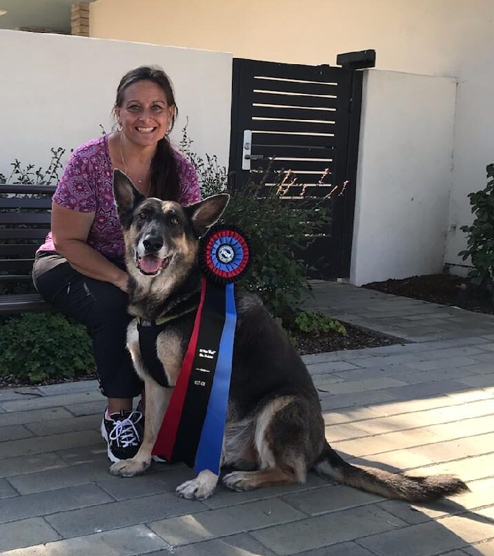 The Power of Presence for Performance Dogs