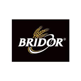 Lgog-Bridor-AVEC-filet