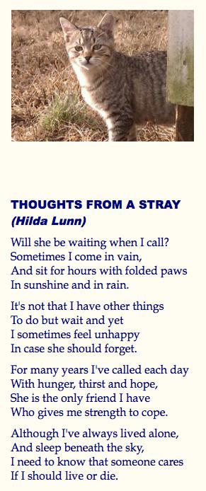 Stray Poem
