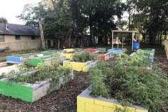 Titusville-Garden-update-2